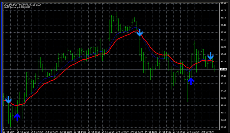 Forex signal no loss