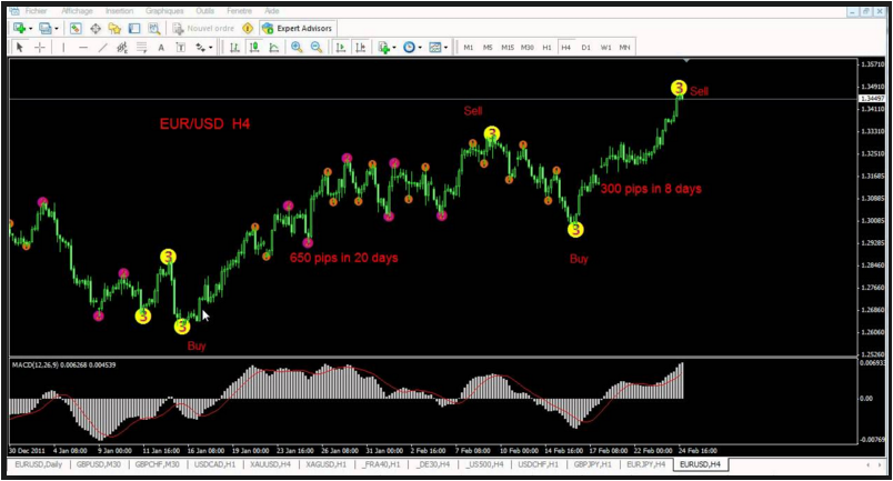 Elliott Wave Oscillator Arrows Revealed